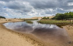 Free Landscape Of Jockey`s Ridge State Park Royalty Free Stock Photography - 101884917