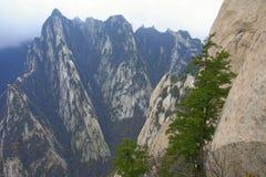Landscape Of Mount Hua Royalty Free Stock Image