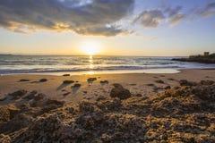 Free Landscape Of Rocky Beach At Sunset Stock Photo - 50226910
