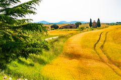 Landscape Of The Hilly Tuscany Field Royalty Free Stock Images