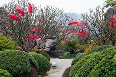 Landscape Of Yuntai Garden Stock Photos