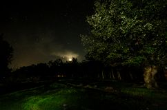 Landscape oh night forest with green meadow in bright starry night or view of milky way in the. Woodland stock images