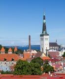 Landscape old city  Tallinn. Landscape old city town in Tallinn , Estonia Stock Photo