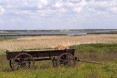 Landscape with old-fashion cart Stock Photography