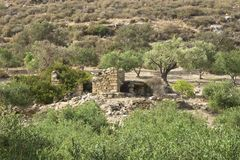 Landscape and Olive Groves in south Crete Royalty Free Stock Photos