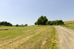 Landscape in the Oltrepo Pavese (Italy). Landscape in the Oltrepo Pavese (Pavia, Lombardy, Italy) at summer Stock Photo