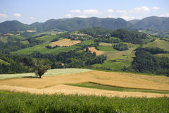 Landscape in the Oltrepo Pavese (Italy) Stock Photo