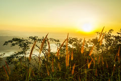 landscape orange mountain sunset with light on grass Royalty Free Stock Photography