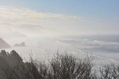 Landscape of Oregon. Landscape of West Coast of Oregon, USA stock photo