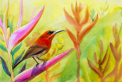 Landscape original painting on paper colorful of  Sunbirds Stock Photo