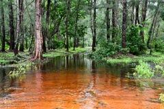 Landscape in Orissa Stock Photo