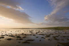 Landscape, Orkney. View of landscape at low tide and dusk west of Deerness, Orkney, Scotland Stock Images