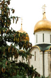Landscape with orthodox Assumption Cathedral of the Moscow Kreml. In isolated on white background royalty free stock images