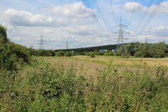 Landscape over farmland with bushes trees and pylons Stock Images