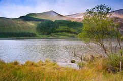 Landscape over Llyn Cwellyn in Snowdonia Royalty Free Stock Images