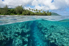 Landscape over and underwater island shore reef. Landscape over and under water surface, tropical island shore with natural trench into the fore reef split by stock images