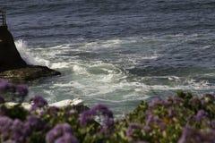 Landscape Overlooking Ocean. Lovely purple flowers overlooking ocean and coastal cliffs Stock Photos