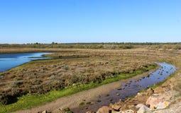 National swamp of Vila Real de Santo Antonio in porugal. Landscape overview of swamp Vila Real de Santo Antonio Royalty Free Stock Photos