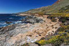 Landscape of Pacific Ocean at Garrapata State Park Stock Image