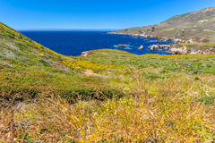 Landscape of Pacific Ocean at Garrapata State Park Stock Photos