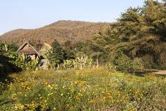 Landscape in Pai Stock Photos