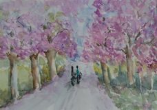 Landscape painting of local road with pink trees and boy and girl ride a bike. Watercolor painting, hand painted Stock Photography