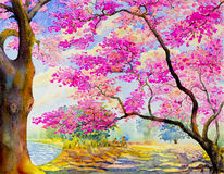 Landscape painting pink color of wild himalayan  cherry with cyclist Stock Images