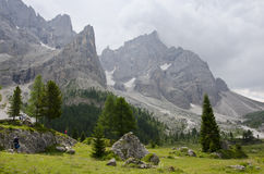 Landscape of Pale di San Martino, Trentino - Dolomites, Italy. Royalty Free Stock Photography