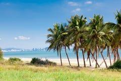Landscape palm beach, Sanya, China Stock Image