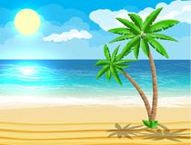 Landscape Of Palm Tree On Beach Stock Images