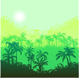 Landscape with palm trees Royalty Free Stock Photography