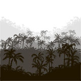 Landscape with palm trees Stock Images
