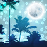 Landscape with palm trees and full moon at night Royalty Free Stock Photos