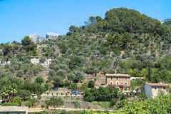 Landscape from Palma Royalty Free Stock Image