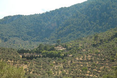 Landscape from Palma Stock Photography