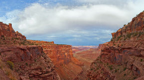 Landscape panorama of the canyon in Canyonlands national park Stock Images