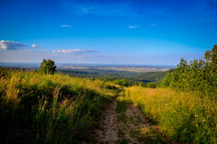 Landscape panorama from hill. And a dirt road leading to the forest below Stock Images