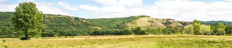 Landscape Panorama of Meadow and Hills with herd of cows grazing. Panoramic landscape of green plain meadow and some cows grazing, on the bank of a river with Royalty Free Stock Image