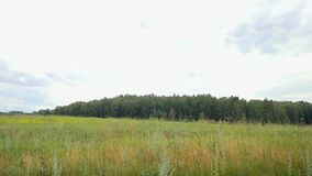 Landscape .Panorama of the nature with river, road stock footage