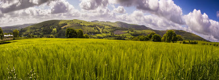 Landscape panorama view valley wales Stock Photography