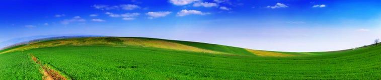 Landscape panoramic 5 Royalty Free Stock Image