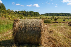 Landscape panoramic. Haystack in the field. Landscape panoramic field. Haystack in the field. Coil of hay.  Rural landscape. Autumn, harvest. Mowed hay. Farmland Stock Images