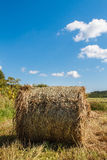 Landscape panoramic. Haystack. Landscape panoramic field. Haystack in the field. Coil of hay.  Rural landscape. Autumn. Mowed hay. Farmland. Mowed grass Royalty Free Stock Photography