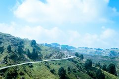 Landscape Panoramic view green terraced field and beautiful yellow meadows in open countryside of Himalayan hill region stock photography