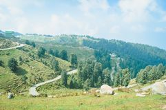 Landscape Panoramic view green terraced field and beautiful yellow meadows in open countryside of Himalayan hill region royalty free stock photos