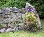 Landscape with pansies in a large pot and decorative bicycle stock photo