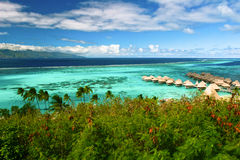Landscape of paradise island Moorea, Royalty Free Stock Photo
