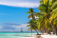 Landscape of paradise tropical island beach and catamarans Royalty Free Stock Image