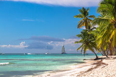 Landscape of paradise tropical island beach and catamarans Royalty Free Stock Photo