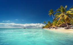 Landscape of paradise tropical island beach. With perfect sunny sky Stock Photo